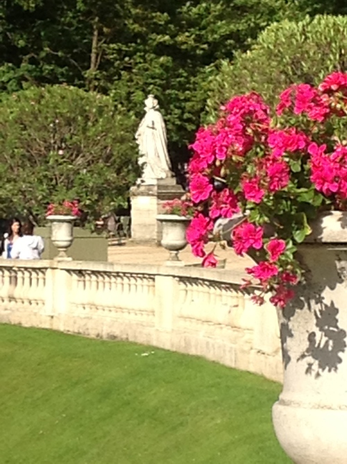 Geraniums bursting from Statuesque Vases and